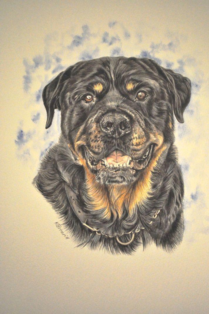 gouache painting www katyferrari com rottweiler breed rottweiler love gouache painting