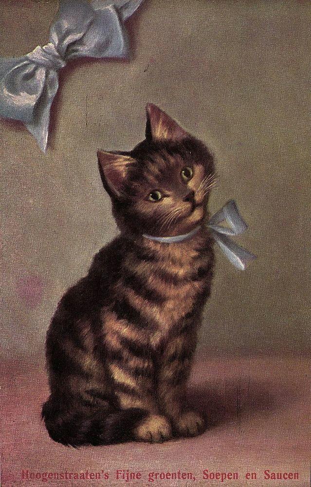cute cat with ribbon sperlich artist postcard ca 1910 s