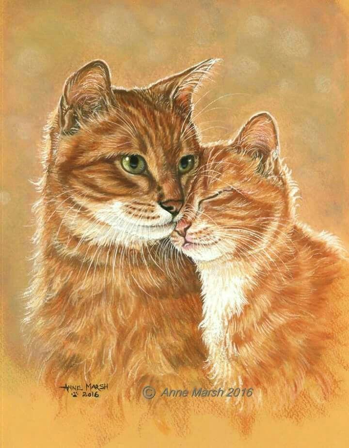 arte watercolor paintings watercolor cat watercolor animals painting prints watercolors cat