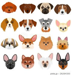 dog pattern dog tattoos dog art small dogs pet shop dog