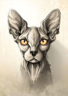 rafapasta ilustrador wild animals katzen zeichnungen dunkle kunst idee tattoo tattoo