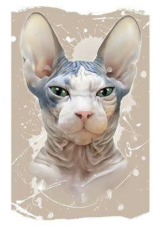 f3de8c708bc4e5794c7713967661504f sphinx cat drawing sphynx jpg 236a 333