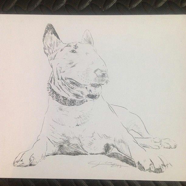 bullterrier dog art pen drawing english bull terrier doggy terriers creative dogs dogart drawing