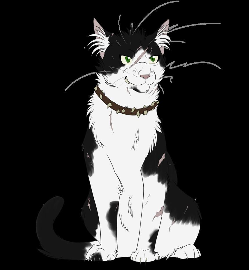 warrior cats 038 bone by kuroi hitsuji