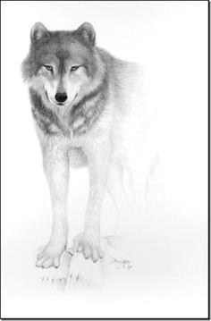 douglandis mouth art wolf face drawing pencil art animal drawings pencil drawings
