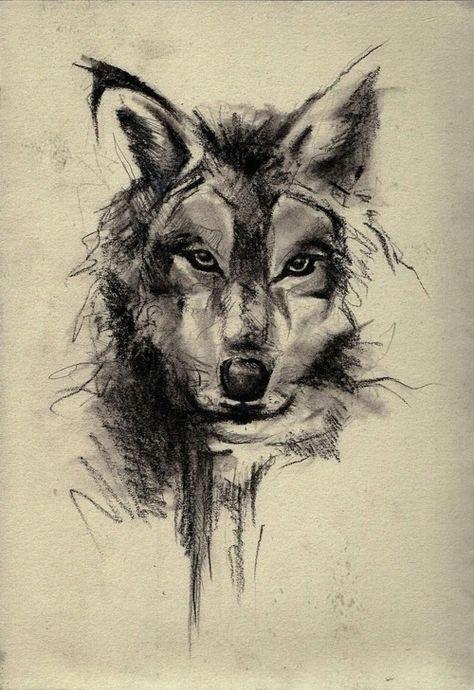 wolf face sketch art wallpaper best iphone wallpaper