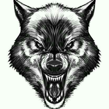 wolf wolf face drawing tribal wolf tattoo wolf tattoos hand tattoos werewolf