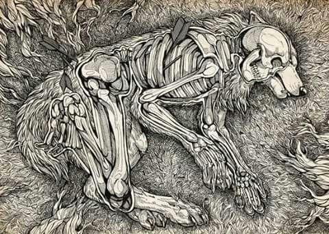 skeleton art skeleton drawings art drawings human skeleton skull painting