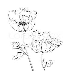 buy the royalty free stock vector image black and white sketch with flowers online a all rights included a high resolution vector file for print web
