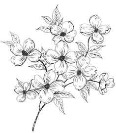 digital two for tuesday flowers everywhere flower pattern drawing flower design drawing flower