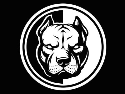 dribbble pitbull by denis pushkar pitbull drawing dog tattoos tattoo drawings art