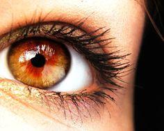 amber eyes ii