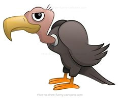 how to draw a vulture bird drawings drawing birds cartoon drawings cute drawings