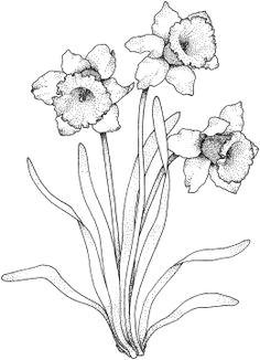 flowers coloring pages super coloring part 3 bezplatne omalovanky omalovanky k tisku