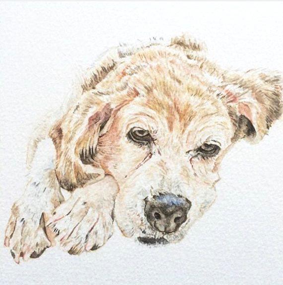 custom pet portrait a5 watercolour dog portrait pet illustration gift for dog owner gift for pet owner one dog