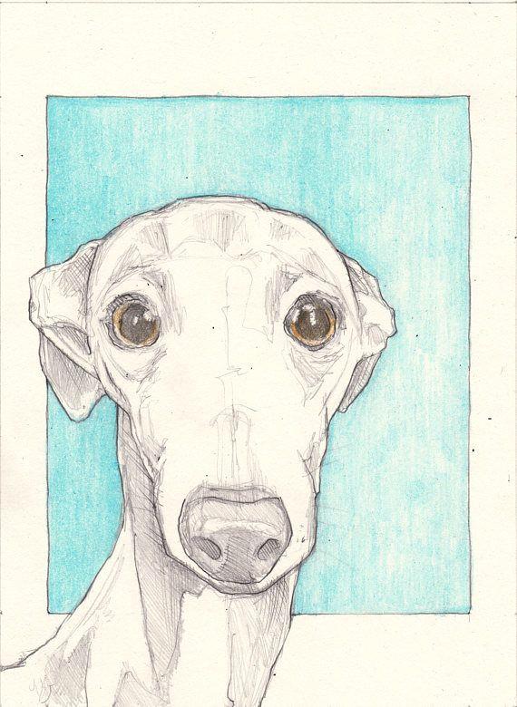 italian greyhound drawing an original 7 5x5 5