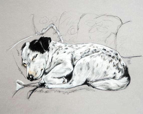 jack russell print terrier art print jack russell sketch jack russell drawing modern art dog drawing dog gifts jack russell painting