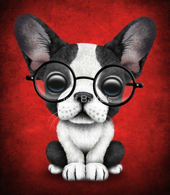 Drawing Of Dog with Sunglasses French Bulldog Puppy with Glasses On Deep Red Ae C In 2019