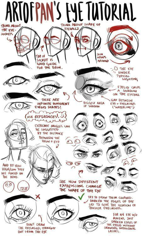 an anon asked me for an eye tutorial i highly recommend looking reference photos on the internet to get used to drawing different eyes