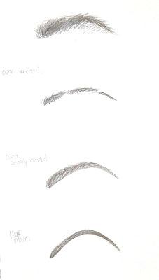 my beautiful life eye brows 101 eyebrow types types of eyebrows drawing eyebrows