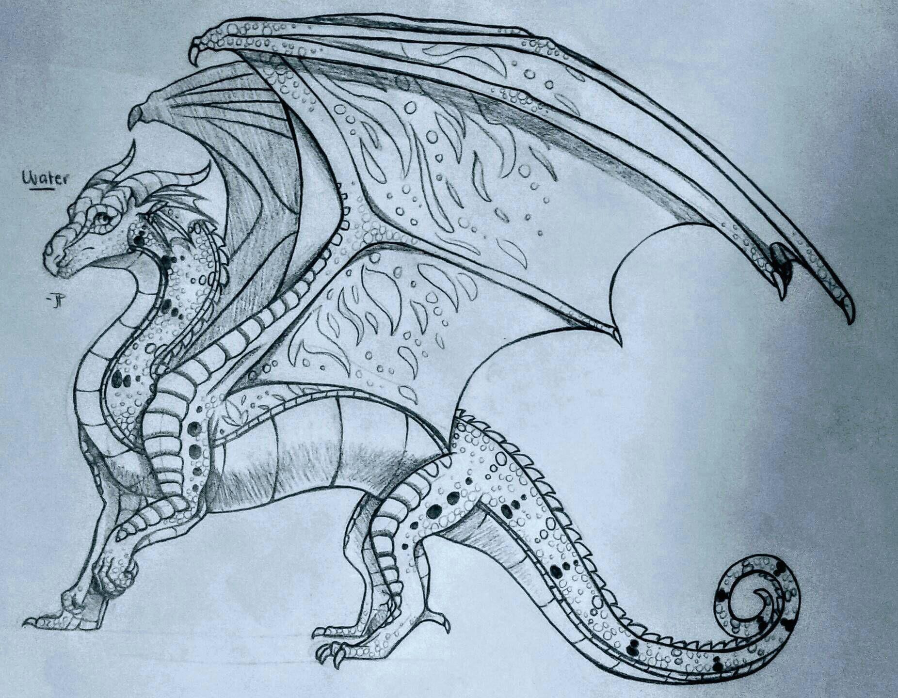 Drawing Of Fire Dragons Rainwing Wings Of Fire In 2018 Pinterest Wings Of Fire Wings