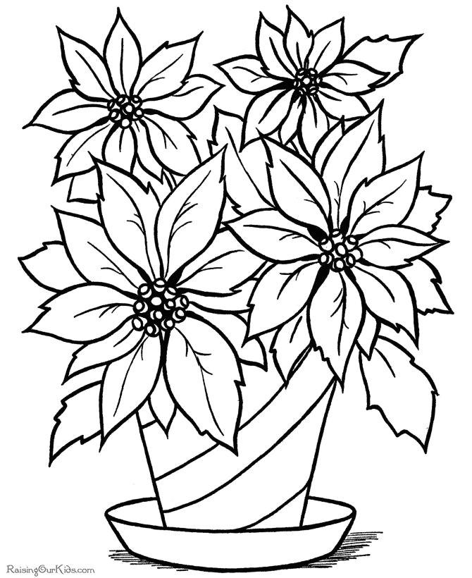 christmas flower printable coloring page coloring pages pinterest coloring pages christmas coloring pages and christmas colors