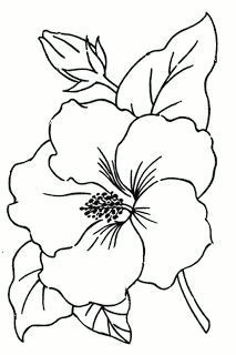 hibiscus flower drawing flower pattern drawing flower outline hawaii flowers drawing simple