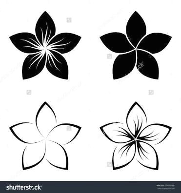 image result for frangipani line drawing hawaiiantattoos