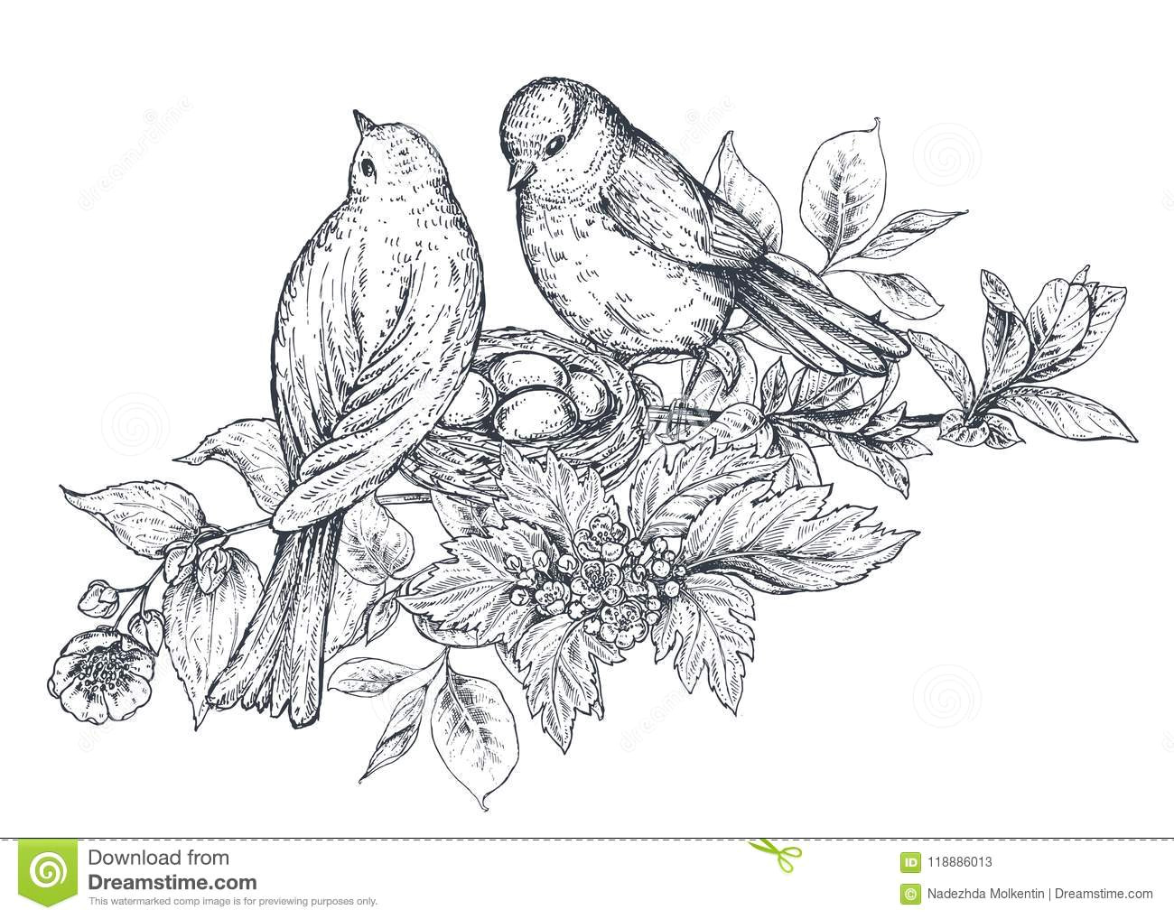 floral composition bouquet with hand drawn flowers blossom branches leaves and birds monochrome vector illustration in sketch style