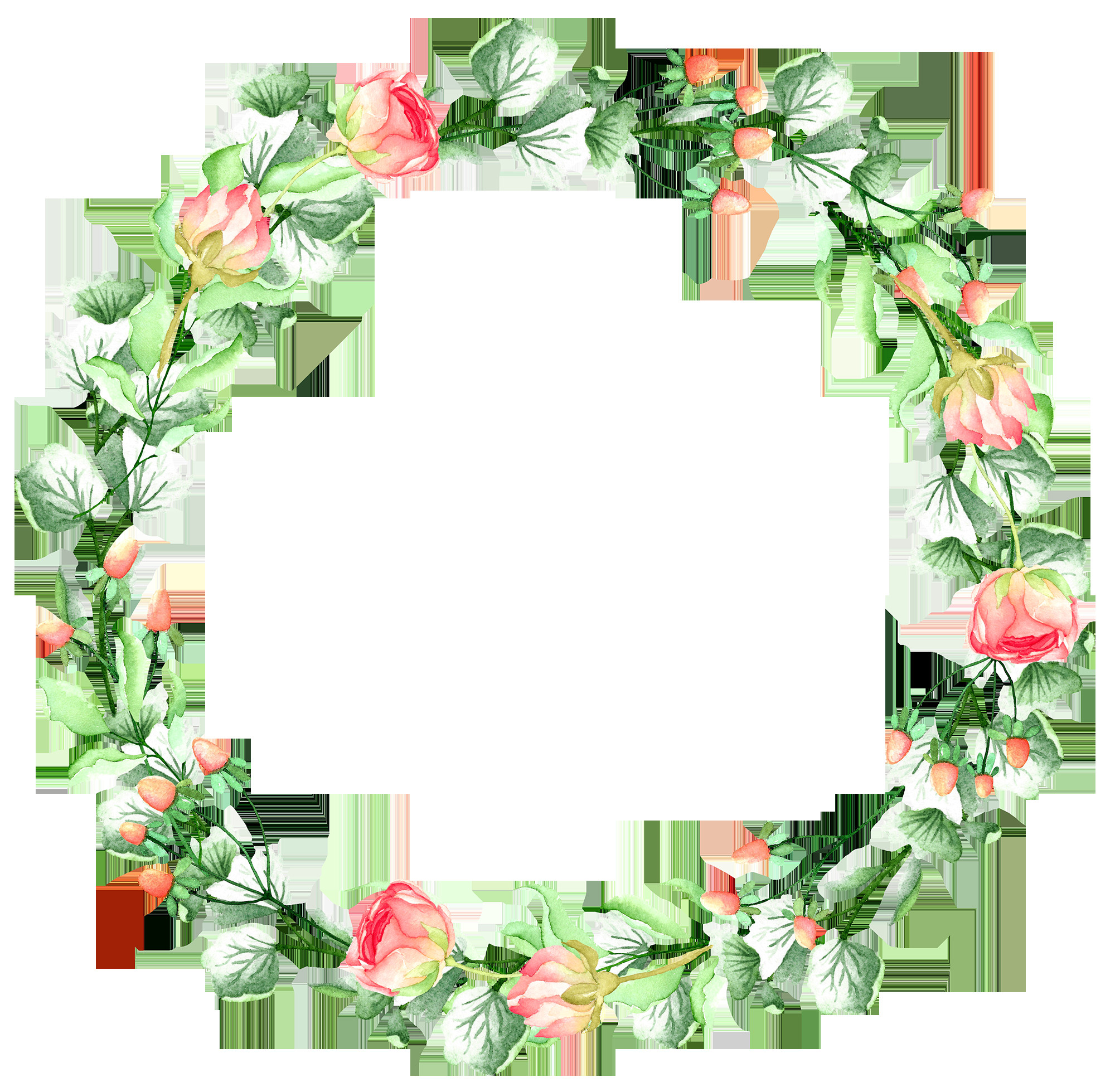 boarders and frames watercolor illustration floral watercolor art hub frame wreath
