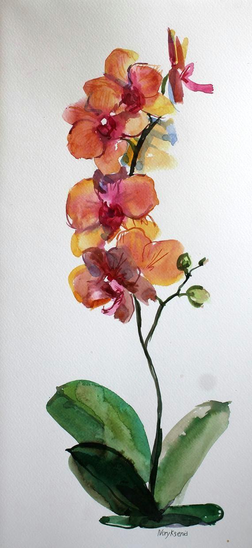 orchid watercolor set of 3 original illustration floral etsy