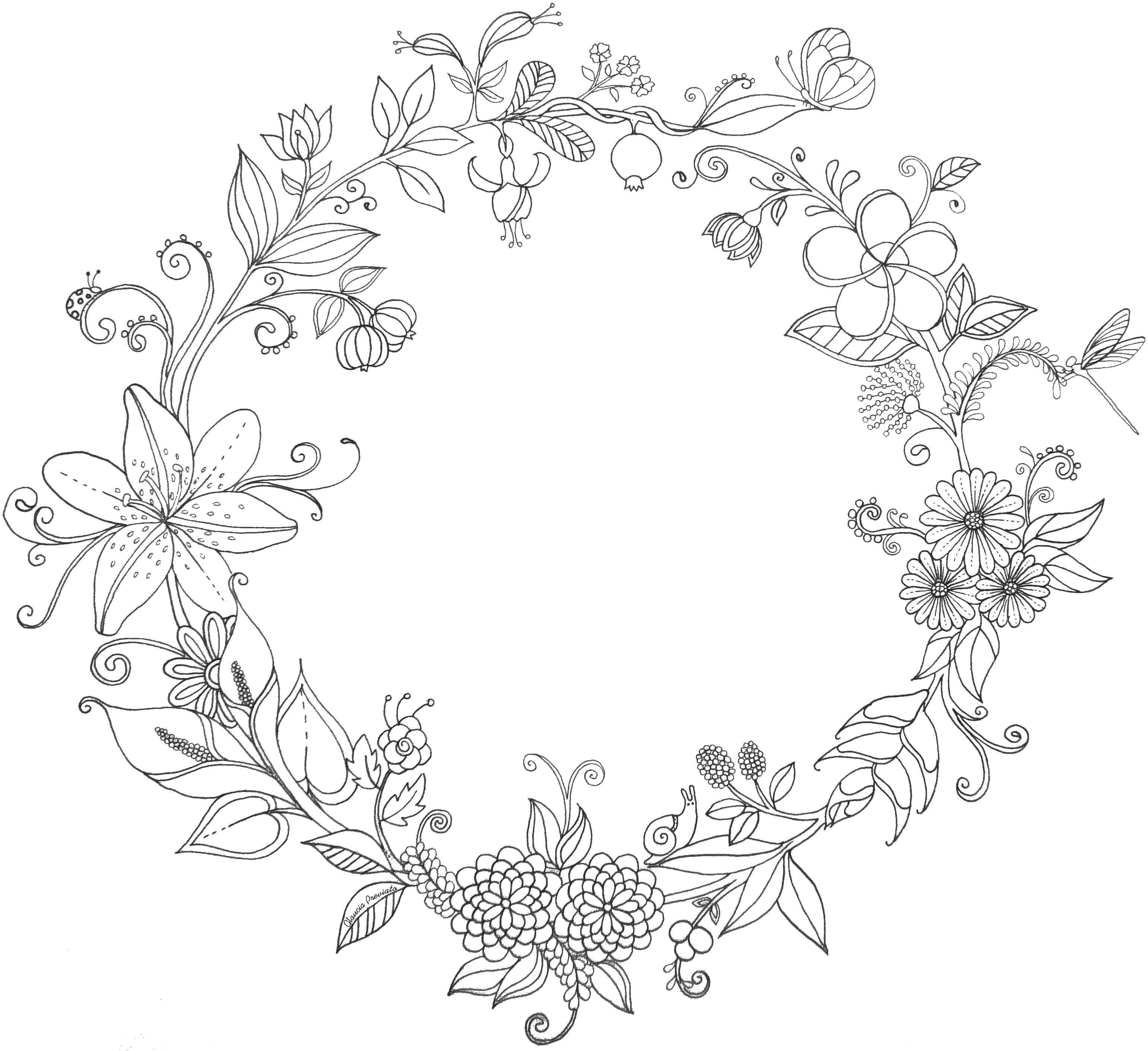 Drawing Of Flowers for Embroidery Ilustraa A O Flores Do Brasil Illustration Flowers Brazil Glaucia