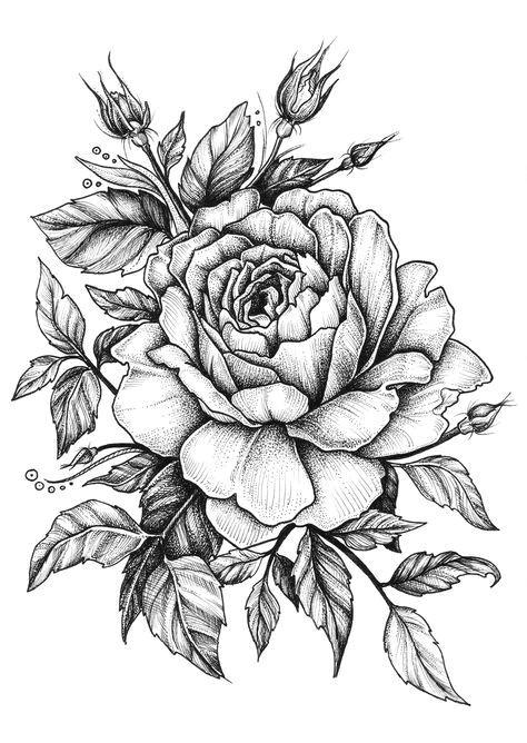 Drawing Of Flowers Tattoo Rose On Behance Life Imitating Art Pinterest Tattoos Tattoo