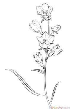 0688824bfe5e50ea4f483641eeb4f1dc kid drawings flower drawings jpg b t