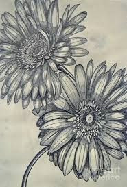 daisies drawing google search time tattoos sleeve tattoos tatoos flower drawings