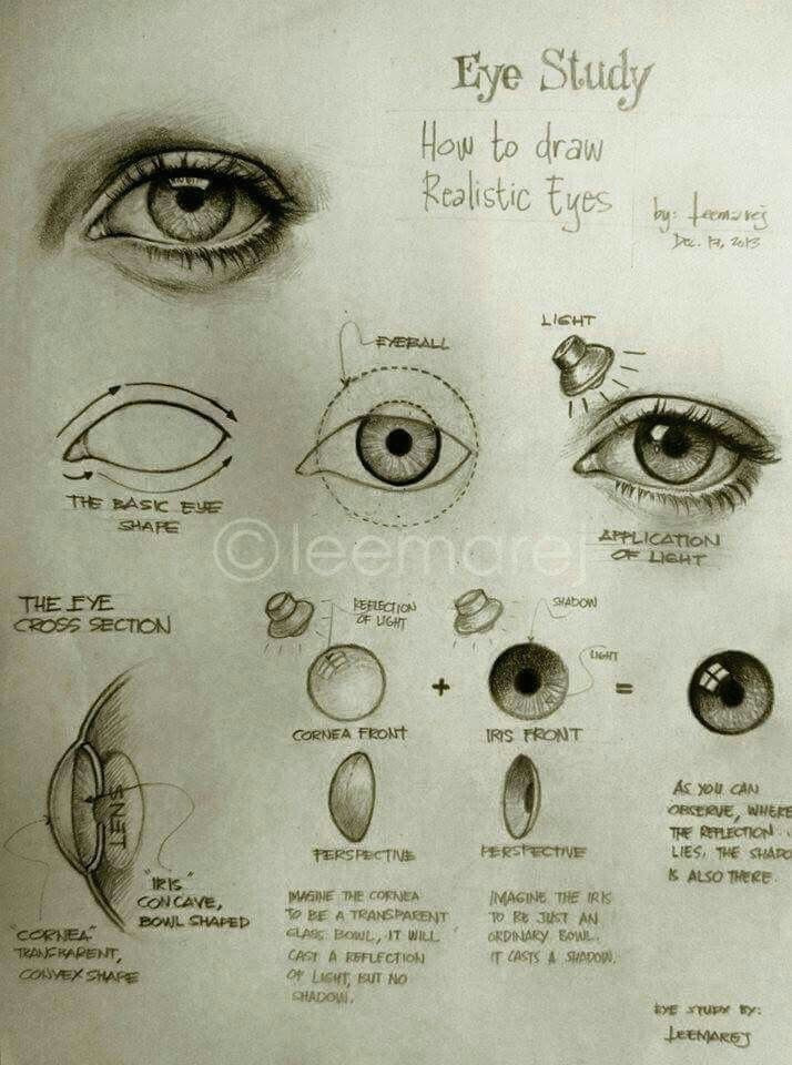 Drawing Of Green Eye Pin by Maria De La torre On How to Draw Eyes Drawings Art Art