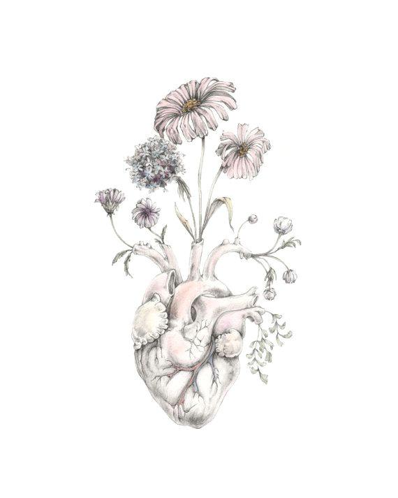 mini print of original drawing watercolor blooming heart painting art anatomy skull nautical