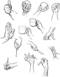 how to draw a hand hand reference human anatomy drawing reference
