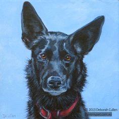 macchiato kelpie dog painting paintmypet pet portraits perth