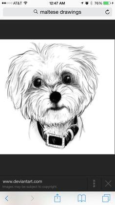 pencil drawings puppy drawings art drawings animal drawings dog art doodle