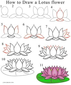 how to draw lotus flower step by step drawing tutorial with pictures cool2bkids lotus flower