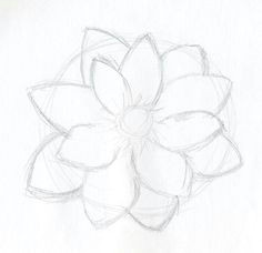 simple drawings of flowers google search for mya easy flower drawings flower sketches