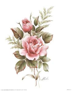 rose pencil drawings rose drawings drawing of a rose