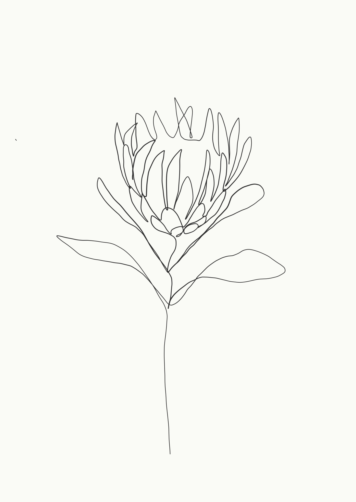 flower line drawings line drawing tattoos botanical line drawing line drawing art