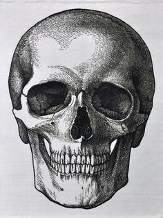 quietus an anatomical skull rug designed by erik lindstrom for lindstrom rugs