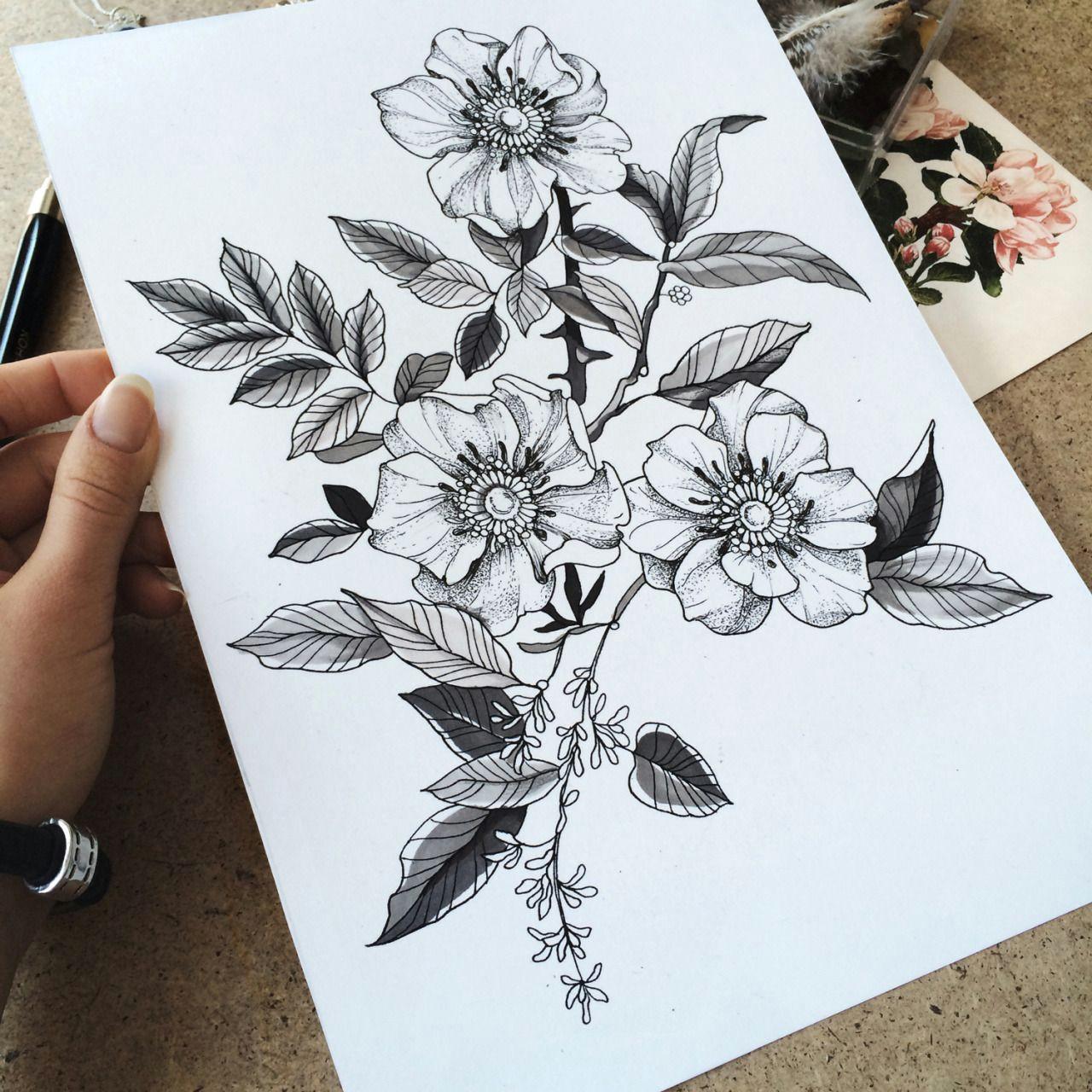 Drawing Of Wild Rose Familyinktattoo Wild Roses Tattooskech Body Modification