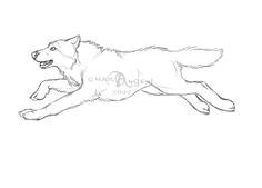running wolf art google search running drawing horse animation running wolf wolf