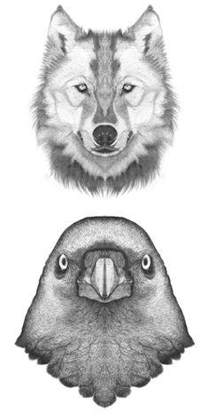 bird wolf drawing animal drawings pencil drawings art drawings wolf tattoos