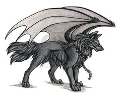 wolves with wings a hello i m shadow not my art im the warrior of the