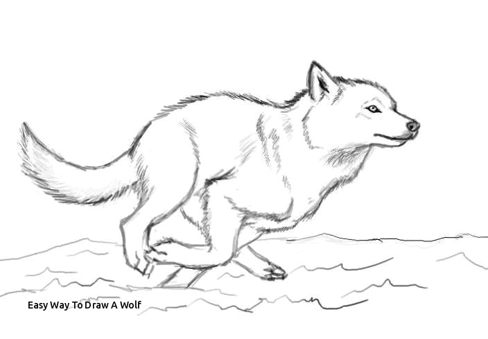 Drawing Pastel Wolf December 2017 Prslide Com Part 19